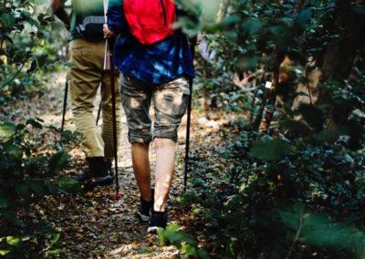 trekking-natura-escursioni-870x579